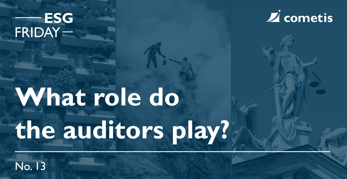 ESG Banner-What role do the auditors play?